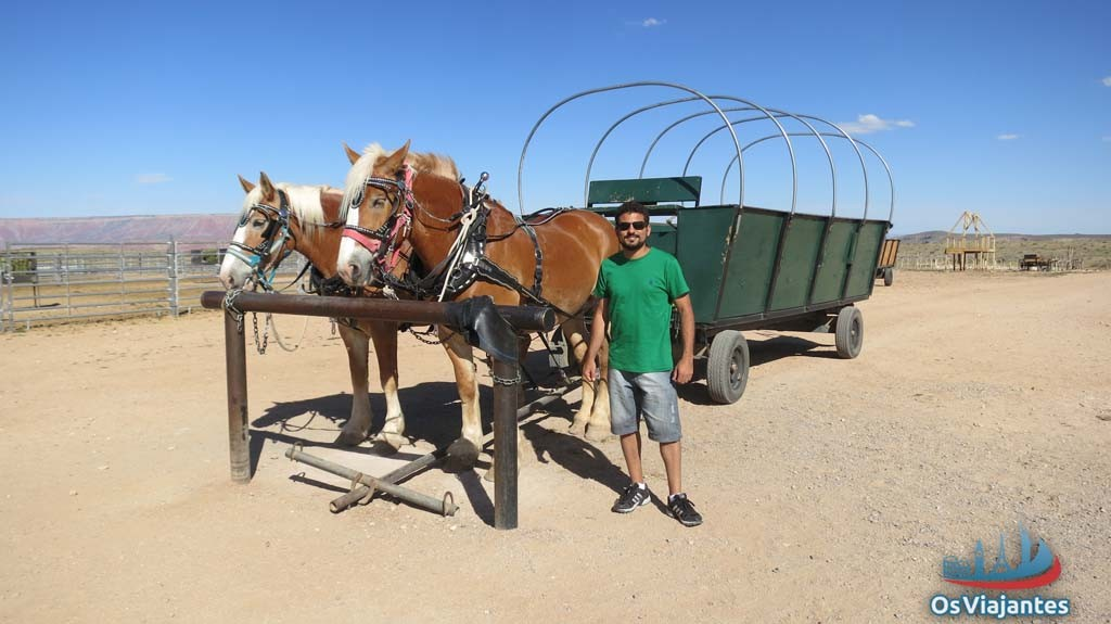 Horses pulling a cart at the Hualapai Ranch Western-Grand Canyon