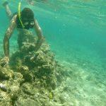 De Palm Island - Snorkel - 03